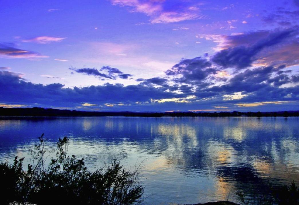 Lake Havasu City Black Friday