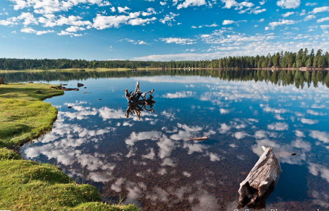 P8 arizona logan thinglink for Apache lake fishing