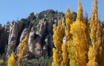 David R. Seay | Oak Creek Canyon