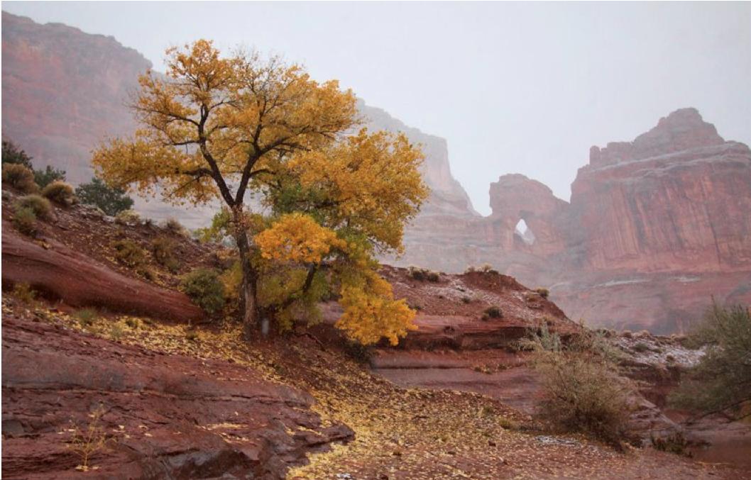landscape photography magazine online nc0