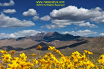 Harleys Eye Photography | Chiricahua Mountains