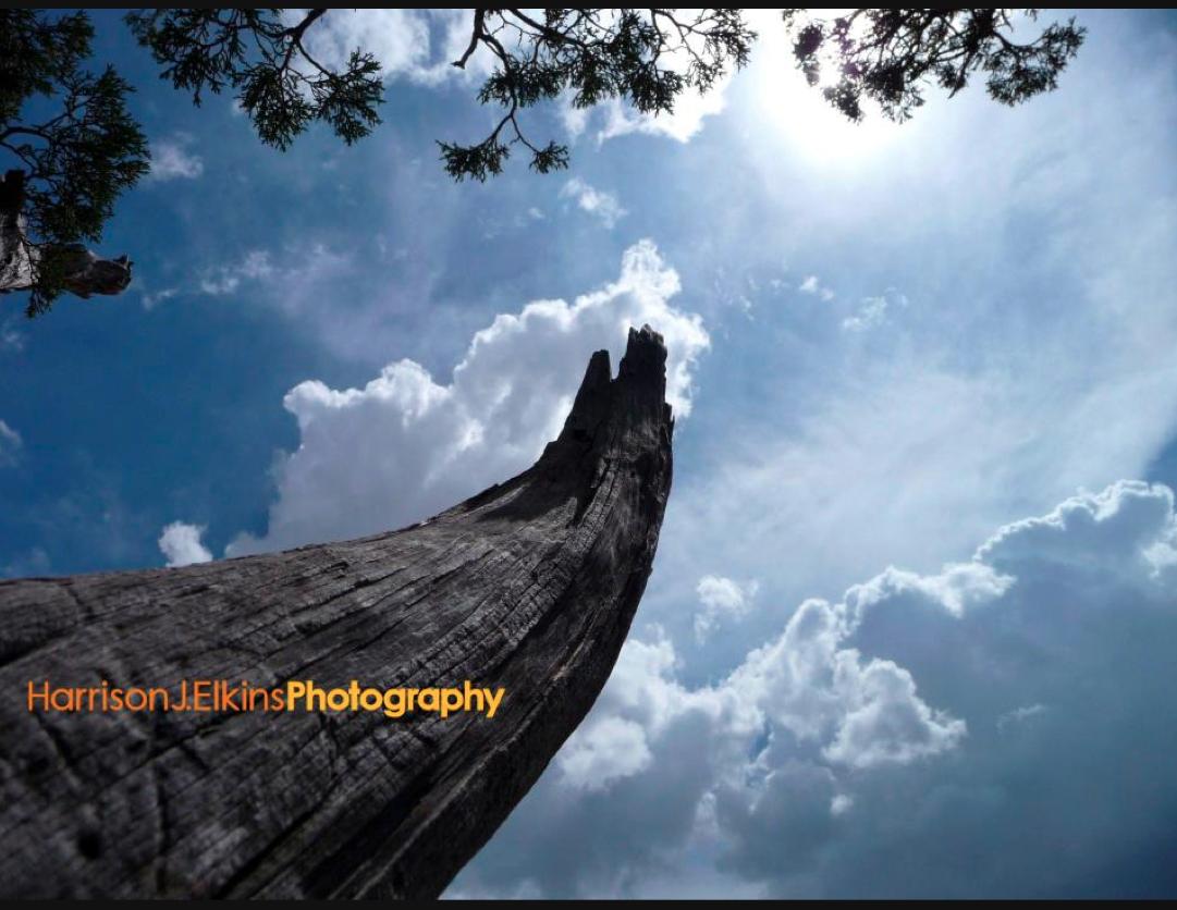 bhole shankar photo 4y
