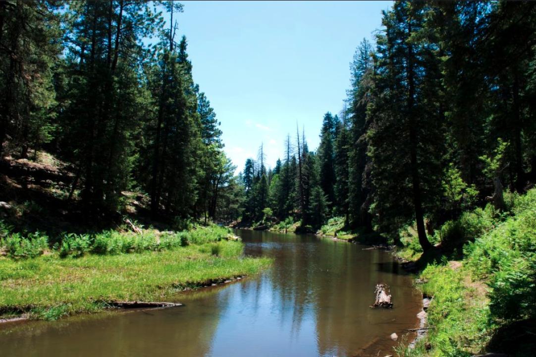 Discover How Mother Nature Shaped The Mogollon Rim | Arizona