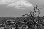 Ardala Evans | Canyon de Chelly