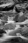 Tim Van Den Berg | Madera Canyon