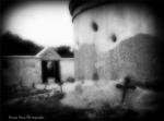 Dyana Muse | Tubac