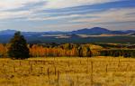 Jackie Klieger | Flagstaff