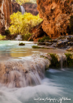 Jeff Maltzman | Havasu Canyon