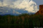 Kellie Ponczko Kerschen | Salt River