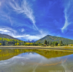 Reid Helms | Lockett Meadow