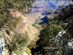 Dyana Muse | Bright Angel trail