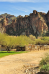 Jeff Stemshorn | Along Salt River trail