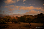 Kellie Ponczko Kerschen | Bulldog Canyon