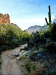 Nicole DeVito | Ventana Canyon