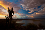 Ron Pelton Jr | Lake Pleasant