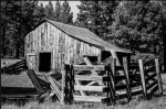 Bobbi Jane Tucker | Old barn, Northern AZ
