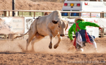 Patty Urlaub | Wickenburg