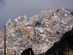 Wendy Dunham | Santa Catalina Mountains