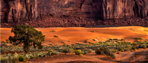"""Red Sands"" by Bev Pettit"
