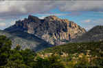 Bob Miller | Chiricahua Mountains