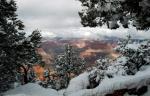 Jack Challem | Grand Canyon