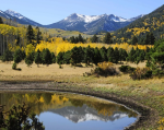Jody M. Tanner | Lockett Meadow