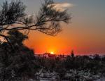 Sandy Klewicki | Four Peaks