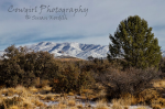 Susan Kordish | Skull Valley