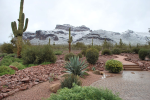 Linda Inman Ellis | Superstition Mountains