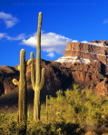 Timm Chapman | Superstition Mountains