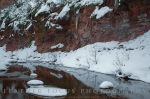 Feather Focus Photography | Oak Creek Canyon
