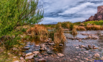 Gary Smith | Lower Salt River