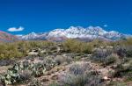 Joel Wicker | Four Peaks