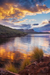 Peter James Nature Photography | Saguaro Lake
