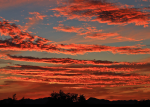 Heavenly Images by Debbie Angel |Tucson
