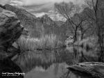 Jeff Maltzman | Sabino Canyon