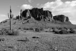 Joel Rivera | Lost Dutchman State Park
