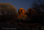 Tamara Gray Becker | Cathedral Rock