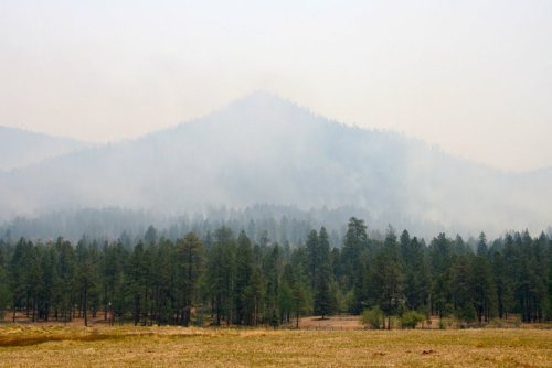 Photo by Kelly Vaughn Kramer | Wallow Fire
