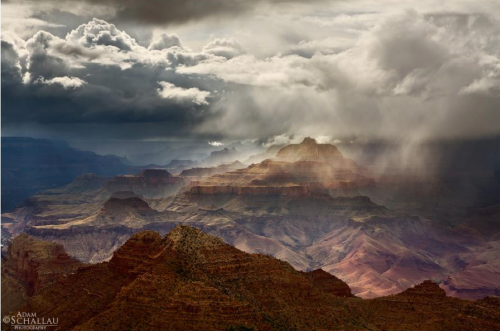 Adam Schallau Photography | Grand Canyon 1