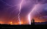 Greg McCown | Tucson