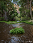 Jeff Maltzman | Aravaipa Canyon