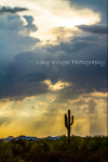 Lacy Kruger Photography | North Scottsdale