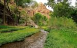 Pam Barnhart | Aravaipa Canyon
