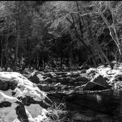 Andrew Kopolow | Oak Creek