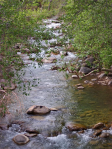 Donna Drake | Fossil Creek