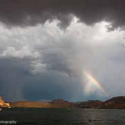 Ed Taube | Saguaro Lake