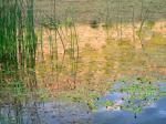 Jacque Alameddine | Nelson Reservoir