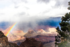 Joan Spivey | Grand Canyon