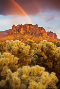 Peter James Nature Photography | Superstitions